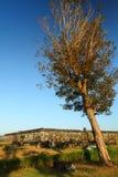 Ratu Boko Ancient Ruins Royalty Free Stock Images