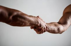 Ratunek, pomaga gest lub ręki, chwyt silny Dwa ręki, pomocna dłoń przyjaciel Uścisk dłoni, ręki, przyjaźń obraz royalty free
