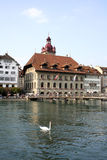 ratusz Luzern zdjęcie royalty free