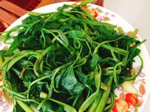 Rau muong or boiled vietnamese morning glory vegetables on dish Royalty Free Stock Photo