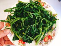 Rau muong or boiled vietnamese morning glory vegetables on dish Stock Photo