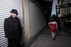 Raublauern in den Schatten Stockfotografie