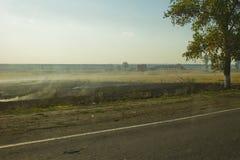 Rauch auf dem Feld Lizenzfreies Stockfoto