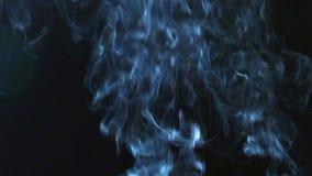 Rauch auf schwarzem Hintergrund stock video