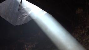 Rauch, der innerhalb der Lichtstrahlen sich türmt stock footage