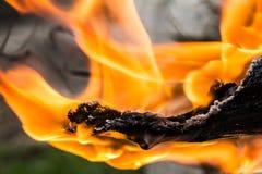 Rauch-Feuernahaufnahme der hölzernes Feuer-Nahaufnahme hölzerne Lizenzfreie Stockbilder