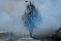 Rauch nach Feuer mit schwarzem Baum Lizenzfreies Stockbild
