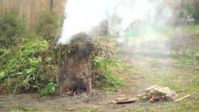 Rauch und Feuer während vom Brennen des Gartenabfalls stock footage