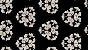 Rauch verbreitet im Raum und bildet eine komplexe geometrische Struktur von Zellen, einen caledoscope Effekt von Rauchströmen 3d lizenzfreie abbildung