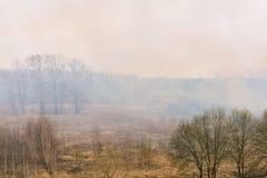 Rauch vom Feuer in den Waldrauchw?ldern Der Anfang eines Waldbrands Trockenes Gras stockfotos