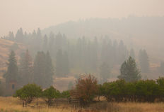 Rauch von Stickpin-Feuer Lizenzfreies Stockbild