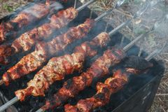 Rauchen Sie über einem gegrillten Schweinefleisch auf einem barbec Picknick des Sommers im Freien Stockfotografie
