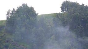Rauchen Sie auf einem Hintergrund des Regens in den Bergen. stock footage