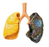 Rauchende Abbrüche! Stockbilder