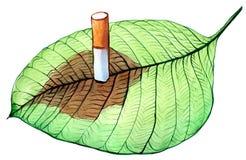 Rauchende Tötungen Stockfoto