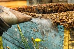 Raucherimkerwerkzeug, zum von Bienen weg von Bienenstock zu halten Lizenzfreie Stockfotos