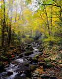 Rauchiger Gebirgsstrom im Herbst Stockfoto