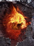 Rauchwolke im Wald Lizenzfreie Stockfotografie