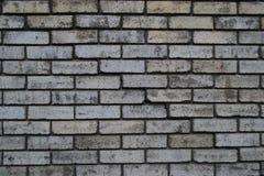Raue Backsteinmauer Stockfoto