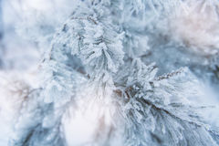 Raue blaue Feiertagsabdeckung mit vielen Schneeflocken Stockfoto
