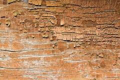 Raue Holzoberfläche mit Sprüngen der Farbe stockbild