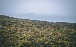 Raue Landschaft in Island mit Nebel und Klippe Lizenzfreie Stockfotografie