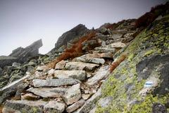 Raue Steintreppe führt in das Unbekannte auf einer Steigung im Nebel stockfotografie