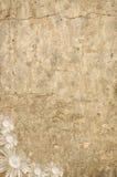 Raue Wand mit weißen Blumen Vektor Abbildung
