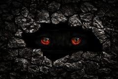 Rauhaariges Monsterrot mustert Nahaufnahme Lizenzfreies Stockbild