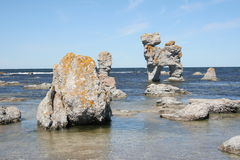 Rauk field on the coastline of Gotland Stock Image