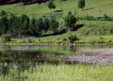 RAUM FÜR BEDECKUNGSschlagzeile UND TEXT Fluss, Steine, weißer Reiher Stockfotos