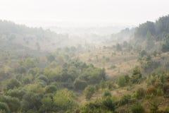 RAUM FÜR BEDECKUNGSschlagzeile UND TEXT Grüne Hügel mit Bäumen im nebelhaften Sonnenaufgang Lizenzfreie Stockfotos