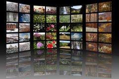Raum mit vier Jahreszeitmedia Stockbilder
