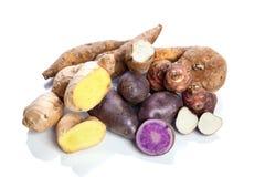Rauwe groenten - knollen - op witte achtergrond stock foto's