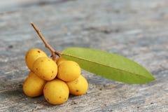 Rauwenhoffia siamensis Scheff fruit  on wood Stock Images