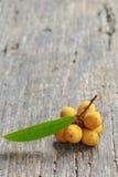 Rauwenhoffia siamensis Scheff fruit  on wood Stock Photography