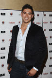 Rav Wilding Royalty Free Stock Image
