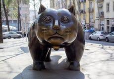 Raval猫,在兰布拉del Raval在巴塞罗那,西班牙 免版税图库摄影