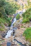 Ravana понижается в зеленый лес стоковая фотография