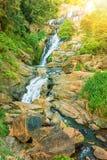 Ravana baja en un bosque verde Imágenes de archivo libres de regalías