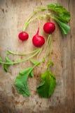Ravanelli con le foglie del ravanello su legno rustico Immagini Stock Libere da Diritti
