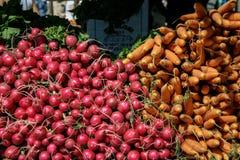 Ravanelli e carote Fotografie Stock Libere da Diritti