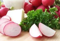 ravanelli Ingredienti per la diffusione del ravanello o la minestra del ravanello - prezzemolo crema e verde dei ravanelli, del b Fotografie Stock Libere da Diritti