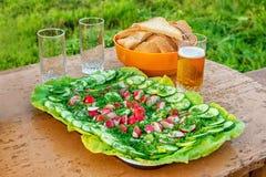 Ravanello, cetriolo ed aneto su un piatto, vetri di birra e pane Immagine Stock