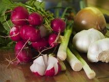 Ravanello, cipolla ed aglio Fotografia Stock Libera da Diritti