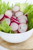 Ravanello rosso organico fresco affettato Fotografia Stock