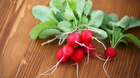 Ravanello rosso organico fresco su una tavola di legno stock footage