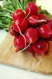 Ravanello succoso rosso Fotografia Stock