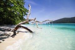 Ravee wyspa, Koh Ravee, Satun prowincja Tajlandia Zdjęcie Royalty Free