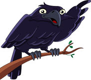 Raven. Illustration of a raven sitting on a branch and pointing with his wing Stock Photography